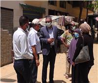 نائب محافظ الغربية يتابع أعمال التطوير بسمنود والمحلة