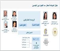«التعاون الدولي» و«القومي للمرأة» يناقشان جهود تمكين المرأة