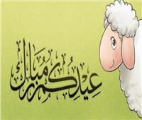 تهنئة عيد الأضحى الأكثر بحثًا على جوجل
