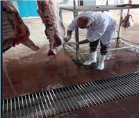 «الزراعة» تناشد المواطنين عدم الذبح في الشوارع وفتح المجازر مجانا
