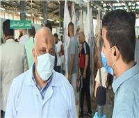 فيديو| مدير مجزر البساتين: كشف طبي شامل على الأضاحي قبل الذبح