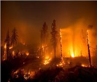 شاهد| إطفاء حرائق الغابات بكاليفورنيا