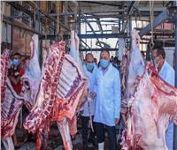 صور.. الزراعة: ذبح 8 آلاف أضحية بالمجازر مجانا ثاني أيام عيد الأضحى