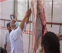 صور.. الزراعة: ذبح 3500 أضحية مجانا في ثالث أيام عيد الأضحى