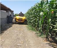 زراعة الغربية: 3 حالات تعدي على الأراضي الزراعية في العيد وتم التعامل معها