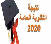 ثالث الجمهورية بالثانوية: «أهلي مش مصدقين»