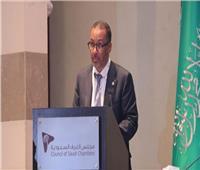تعيين عوض زين متحدثا رسميا لمجلس الأعمال السعودى المصرى بالقاهرة