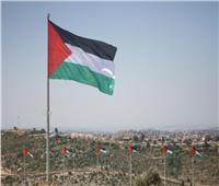 فلسطين تعلن الحداد وتنكس الأعلام حدادًا على ضحايا انفجار بيروت