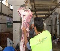 «الأورمان» تنتهي من توزيع لحوم الأضاحي على قرى المنيا
