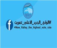 شباب مستقبل وطن بالوادي الجديد يطلقون هاشتاج «الوادي الجديد الأعلى تصويت»