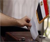خبراء: الشعب المصري سيبهر العالم في انتخابات مجلس الشيوخ