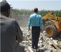 إزالة 2684 تعديًا على أملاك الدولة والأراضي الزراعية بالغربية