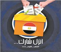 توعية إلكترونية للمشاركة فى انتخابات الشيوخ.. وكوميديا الدعاية تثير الجدل