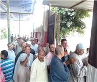 إقبال كبير من الناخبين فى قرى البحيرة على لجان الانتخابات