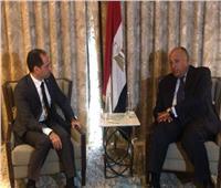 شكري يبحث مع رئيس حزب «الكتائب» سبل دعم لبنان لتجاوز المرحلة العصيبة الراهنة