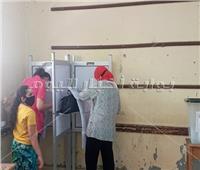 بالفيديو والصور| السيدات يتصدرن المشهد في انتخابات مجلس الشيوخ بلجان شبرا