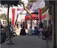 عبير أحمد تدعو الأمهات للإدلاء بأصواتهن في انتخابات الشيوخ