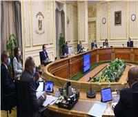 الحكومة توافق على تنظيم وزارة شئون المجالس النيابية