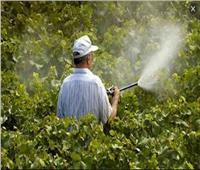 الزراعة تشدد الرقابة على المبيدات وتضبط 460 ألف عبوة غير مسموح بتدوالها