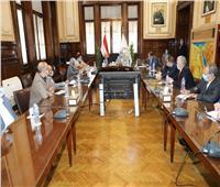 وزير الزراعة ومحافظ جنوب سيناء يبحثان آليات زيادة التنمية الزراعية والاستثمار