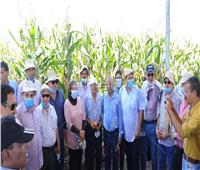 صور| «الزراعة» تنظم يوم حقلي للذرة الشامية بمحافظة كفر الشيخ