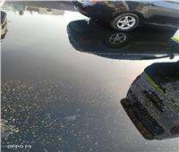 بالصور| تسرب حمولة سيارة مواد بترولية على الطريق الدائري