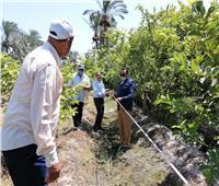 الزراعة: إقبال المزارعين على الاشتراك في منظومة الري الحديث بدمياط