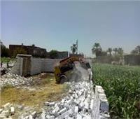 إزالة 10 حالات تعدي على الأراضي الزراعية بالمنيا