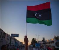 الأحزاب السياسية تشيد بالدور المصري لحقن دماء الشعب الليبي