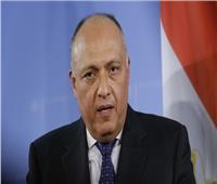 شكري ونظيره الألماني يبحثان آخر تطورات الملف الليبي والقضية الفلسطينية