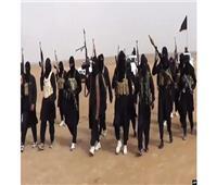 """الأمم المتحدة: أكثر من 10 آلاف """"داعشي"""" يتحركون بحرية بين العراق وسوريا"""