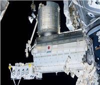 «يتنقل بين الكواكب».. كائن حي بقي 3 سنوات على قيد الحياة في الفضاء