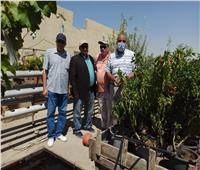الزراعة: تتابع أنشطة مشروع تعزيز القدرات التسويقية لصغار الفلاحين