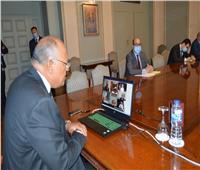 وزير الخارجية: مصر لن تقف مكتوفة الأيدي في مواجهة الأطماع التركية