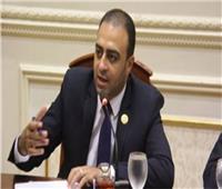محمد خليفة: وفد الغربية يؤيد قرارات «أبوشقة» للحفاظ على بيت الأمة
