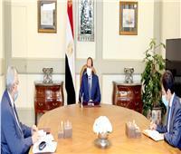 السيسي يوجه باستخلاص الدروس المستفادة من تجربة مصر لمكافحة كورونا منذ اندلاعها عالمياً