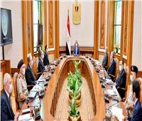السيسي يوجه بزيادة الرقعة الزراعية المنتجة وبناء مجتمعات عمرانية حديثة في سيناء وجنوب الوادي