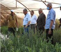 الزراعة: وفد «أكساد» يزور مركز التنمية المستدامة بمطروح