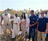 الزراعة وبرنامج الأغذية العالمى يدعمان صغار الزراع فى صعيد مصر