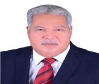 عضو بـ«الشيوخ»: الغرفة الثانية للبرلمان ستكون علامة فارقة في تاريخ مصر