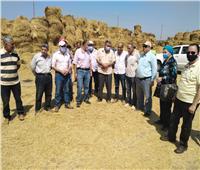 «الزراعة والبيئة» يتابعان أعمال منظومة جمع وتدوير قش الأرز بكفر الشيخ
