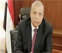 تعيين المستشارة هبة محمود مديرًا للنيابة الإدارية بأسوان