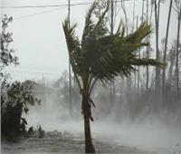 """السلطات اليابانية تصدر تحذيرا بشأن العاصفة الاستوائية """"دولفين"""""""