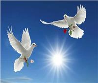 فيديو|«حدث في مثل هذا اليوم» ..« اليوم العالمي للسلام »