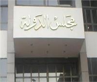 22 نوفمبر إعادة المرافعة في قضية غلق الـ«يوتيوب» داخل مصر