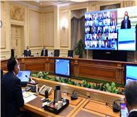 الحكومة توافق على تأسيس شركة مصرية سودانية لتسمين المواشي وزراعة المحاصيل الحيوية