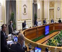 الحكومة تستعرض تخصيص العقارات لإقامة وحدات صناعية بميت غمر وبنها