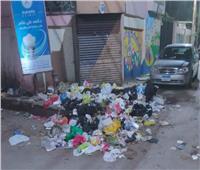 أهالي شارع هداية بطنطا يستغيثون من تراكم القمامة
