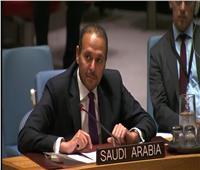 منزلاوي: السعودية من أكبر الجهات المانحة للمساعدات الإنسانية والتنموية في العالم
