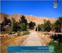 فيديو| جنوب سيناء: تحويل «الطور» لمدينة سياحية عالمية بالتنسيق مع الحكومة